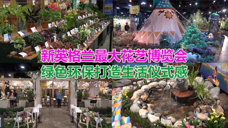 新英格兰最大花艺博览会 绿色环保打造生活仪式感