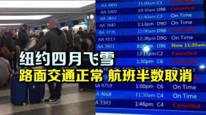 纽约四月飞雪 地面交通正常 航班半数取消