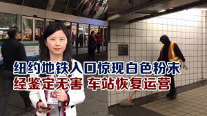 纽约地铁入口惊现白色粉末 经鉴定无害 车站恢复运营