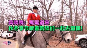 【高娓娓:娓娓道来】秋冬季节跟着贵族们一起去猎狐!