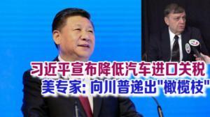 """习近平博鳌论坛演讲宣布降低汽车进口关税 美专家:向川普递出""""橄榄枝"""" 或为""""贸易战""""降温"""
