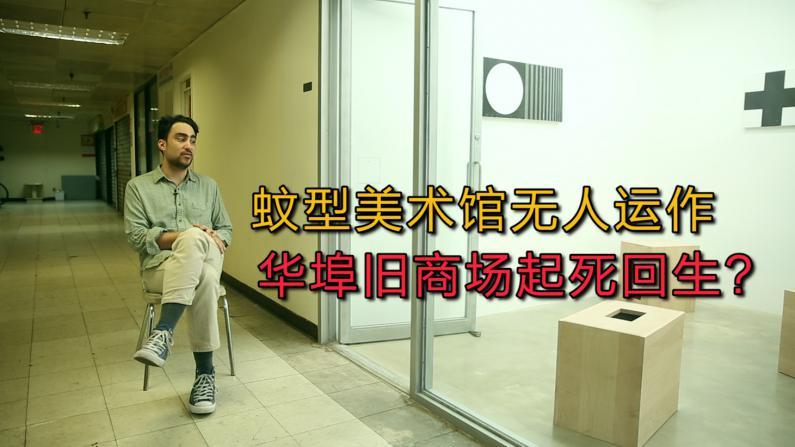 蚊型美术馆无人运作  华埠旧商场起死回生?