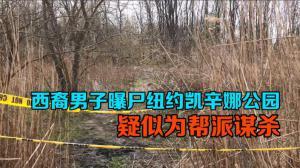 西裔男子曝尸纽约凯辛娜公园 疑似为帮派谋杀