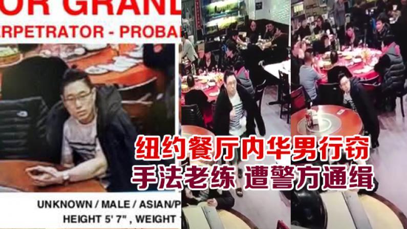 纽约餐厅内华男行窃 手法老练 遭警方通缉