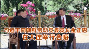 习近平同朝鲜劳动党委员长金正恩 在大连举行会晤