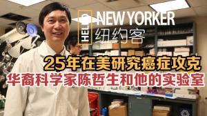 14年研究癌症攻克 华裔科学家陈哲生和他的实验室
