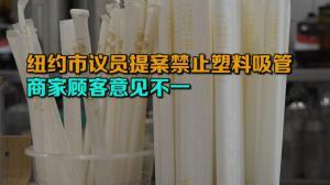 纽约市议员提案禁止塑料吸管  商家顾客意见不一