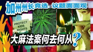 反大麻 这次华人能如愿以偿吗?