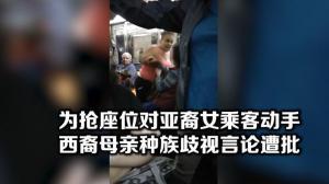 纽约地铁种族歧视事件 一个座位引发的纷争