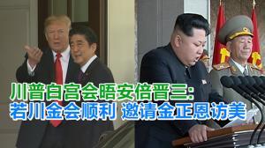 川普白宫会晤安倍晋三:若川金会顺利 邀请金正恩访美