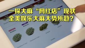 """大麻""""网红店""""的大麻现状 娱乐大麻大势所趋?"""