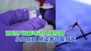 德州两郡发现西尼罗河病毒蚊子样本 专家提醒小心防蚊 感染者可能致死