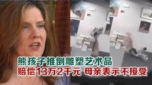 熊孩子推倒雕塑艺术品 赔偿13万2千元 母亲表示不接受