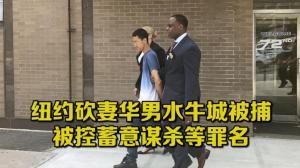 纽约砍妻华男水牛城被捕 被控蓄意谋杀等罪名