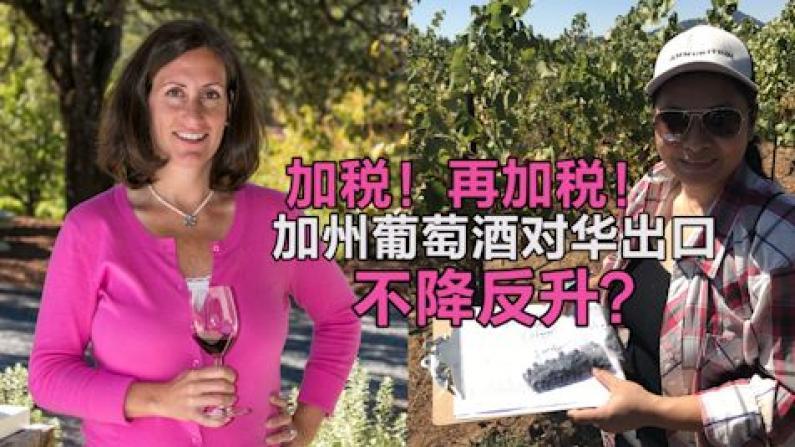 加税!再加税!加州葡萄酒对中国出口何以不降反升?