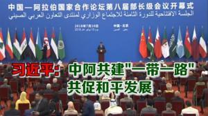 """习近平:中阿共建""""一带一路"""" 共促和平发展"""