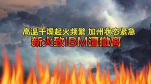 高温干燥起火频繁加州陷入紧急状态 新火致IBM遭撤离