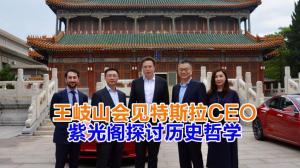王岐山会见特斯拉CEO 紫光阁探讨历史哲学