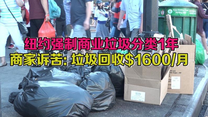纽约强制商业垃圾分类1年 商家诉苦:垃圾回收$1600/月
