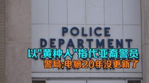 """以""""黄种人""""指代亚裔警员 纽约警局:电脑20年没更新了"""