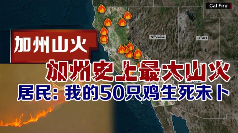 加州史上最大山火 居民:我的50只鸡生死未卜