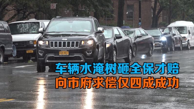 车辆被水淹树砸全保才赔  向纽约市府求偿仅四成成功