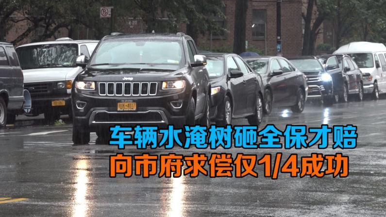 车辆被水淹树砸全保才赔  向纽约市府求偿仅1/4成功