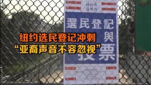 """纽约选民登记冲刺 """"亚裔声音不容忽视"""""""