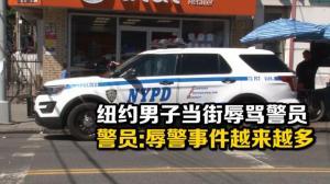 纽约男子当街辱骂警员 警员:辱警事件越来越多
