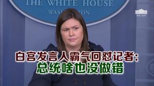 白宫发言人霸气回怼记者: 总统啥也没做错