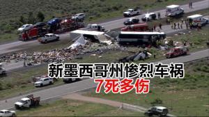 新墨西哥州惨烈车祸 7死多伤