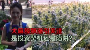 华尔街开盘涨跌互现 大麻生产公司Tilray股价暴涨
