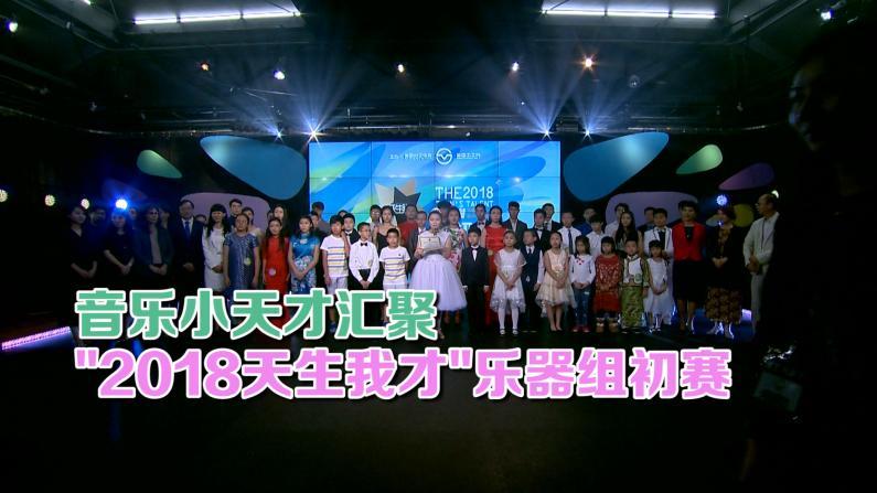 """""""2018天生我才""""乐器组初赛圆满落幕"""