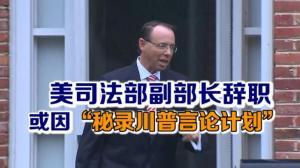 """美司法部副部长辞职 或因""""秘录川普言论计划""""传闻"""