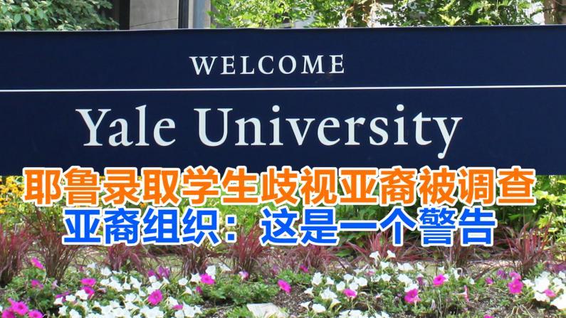 耶鲁录取学生歧视亚裔被调查 亚裔组织:这是一个警告
