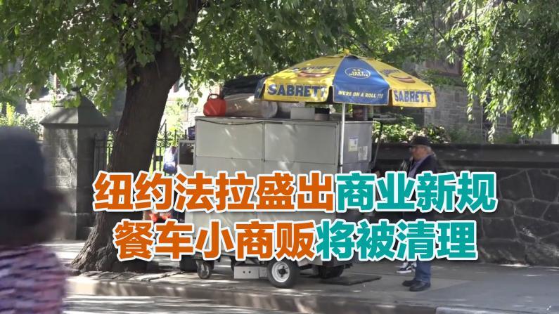 纽约法拉盛出商业新规 餐车小商贩将被清理