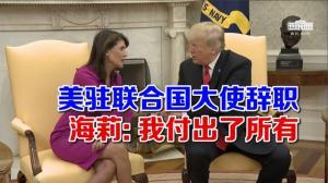 美驻联合国大使辞职 海莉: 我付出了所有