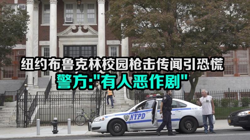 """纽约布鲁克林校园枪击传闻引恐慌  警方:""""有人恶作剧"""""""
