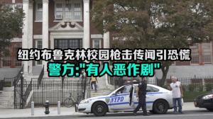 纽约布鲁克林校园枪击传闻引恐慌  警方: