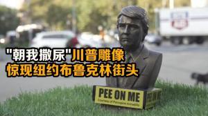 """""""朝我撒尿""""川普雕像 惊现纽约布鲁克林街头"""
