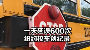纽约校车一天延误600次 市议会讨论新法案改善校车服务