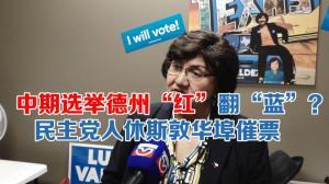 中期选举倒计时  德州州长民主党候选人休斯敦华埠催票