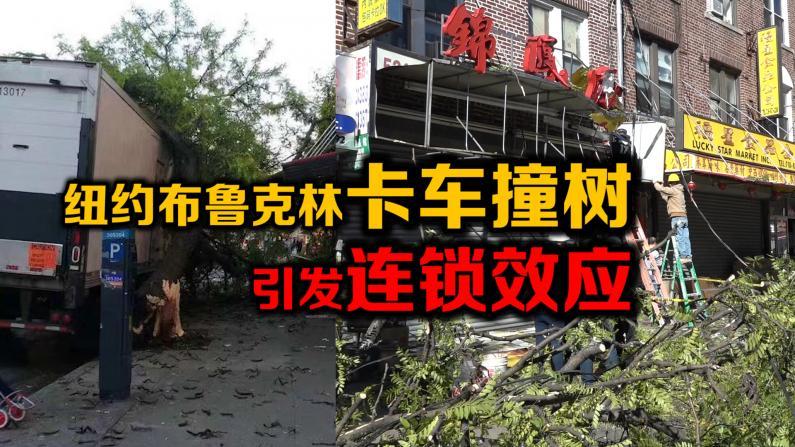 纽约布鲁克林卡车倒车撞树引发连锁效应