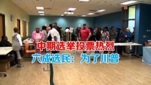 中期选举投票热烈 六成选民:为了川普