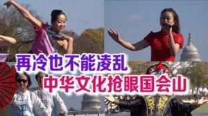 再冷也不能凌乱 中华文化抢眼国会山