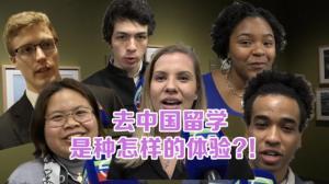 去中国留学 是种怎样的体验?!