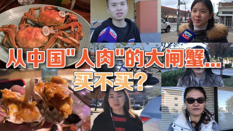 从中国人肉的大闸蟹... 买不买?