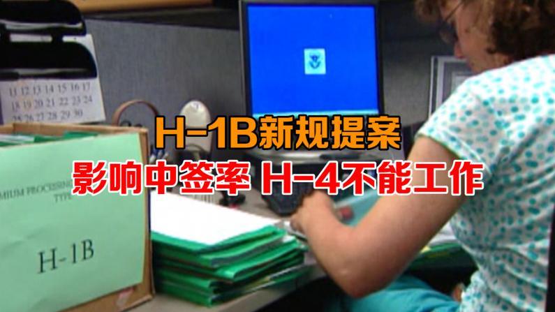 H-1B新规提案 影响中签率 H-4不能工作