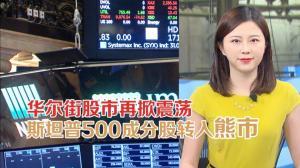 华尔街股市再掀震荡 斯坦普500成分股转入熊市