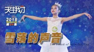 """2018""""天生我才""""第二十集:雪落的声音"""
